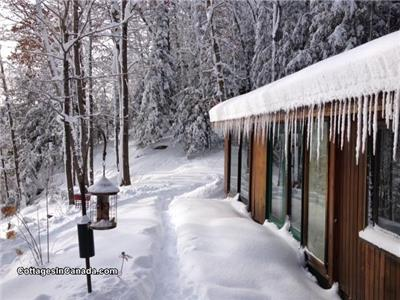 *Romantic Cooper Lake Cedar Log Cottage 4 Season* Special Jan. & February 3 nights $595.00 Total