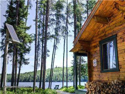 Forest Bathing - Chalet Rentals