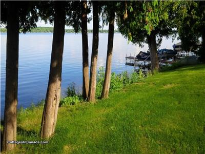 BALSAM LAKE 6 BDRM WATERFRONT COTTAGE (KAWARTHAS)