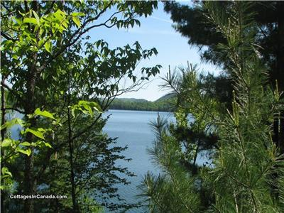 Lac Pemichangan - Private waterfront lots! $350,000 each /$650,000 package