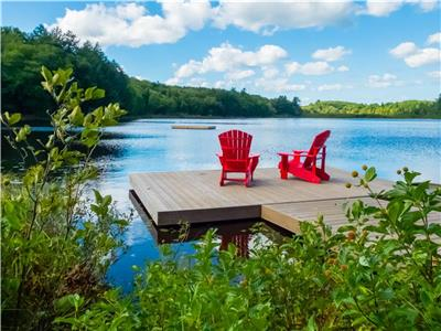 Pet friendly waterfront cottage paradise, on over 3 private acres.  Less than 2 hours from Toronto