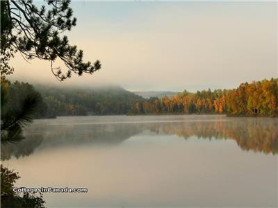 Twin Pines Cottage