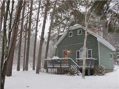 LAKE OF BAYS~Cozy up to the fireplace or visit Algonquin Park~AVAILABLE January * 3 Night Minimum