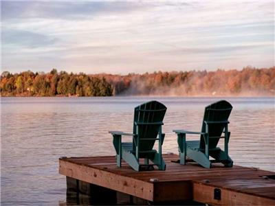 A hidden gem on Chandos Lake. Perfect for your family and pooch with land and water.