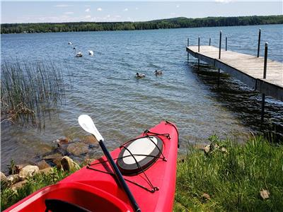 Lakefront Cedar Haven - Canoe,Kayak, AC, Wifi - 1 hr from Toronto