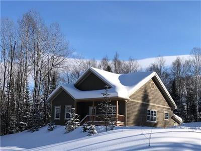 Chalet Lac-Sauvage | Modern Cottage with Private SPA & Game Room for 10 people in Mont-Tremblant