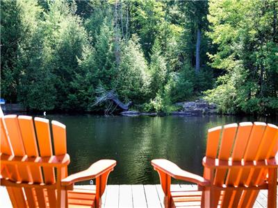 Waterfront cottage & Bunkie on a big private lot!!