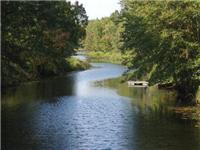 Salmon River Tranquil Waterfront Cottage - Family and Pet-Friendly -- Sleeps 6