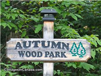 Autumn Wood Park