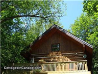 Calabogie Lake Log Cottage for rent-Sleeps 9-max 6 adults
