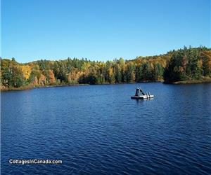 Dream Escape 300'Lakefront in Gatineau Hlls Wakefield 35k City; June 18-25-Jun 24-02 July Save $400!
