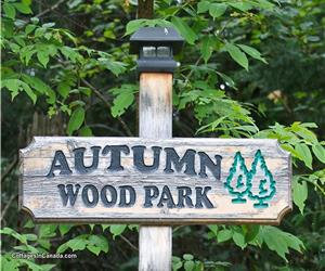 Autumn Wood Park on Lac Lacroix - Cottage with Private Cabin and HOT TUB for 8!