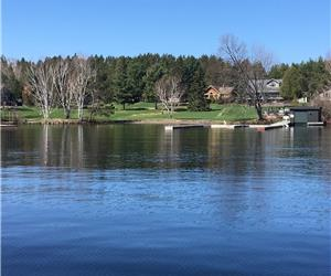 RISE & SHINE - Dream cottage & beach on Lake Rosseau, MUSKOKA - close to shopping/dining/golf!